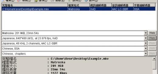 影片檔案格式檢視工具 MediaInfo免安裝下載